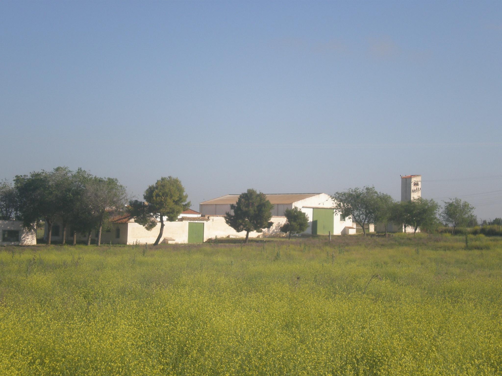 Casa Juarez Eventos Albacete Albacete